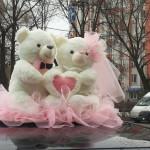 Мишки розовые большие 800р.